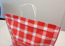 Gift Bag with Cord Handle and Sealing Strip