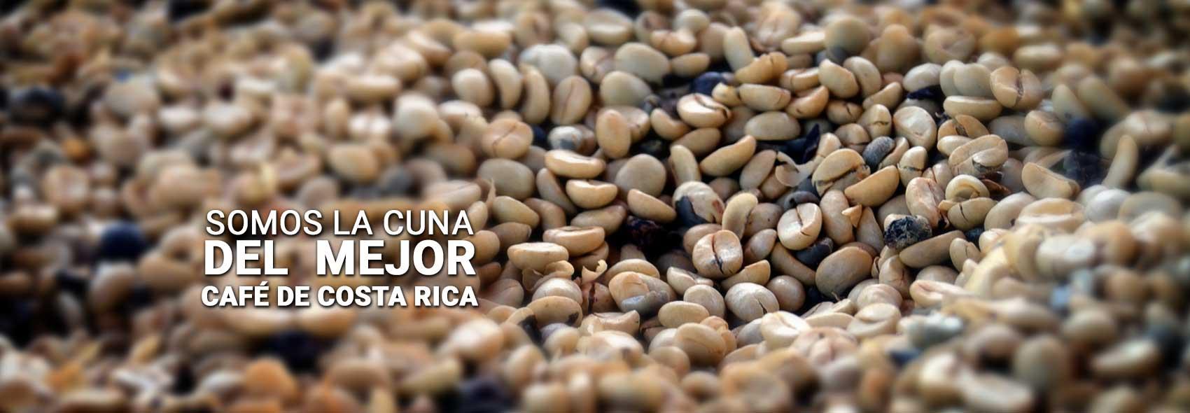 Coffee tours in Costa Rica
