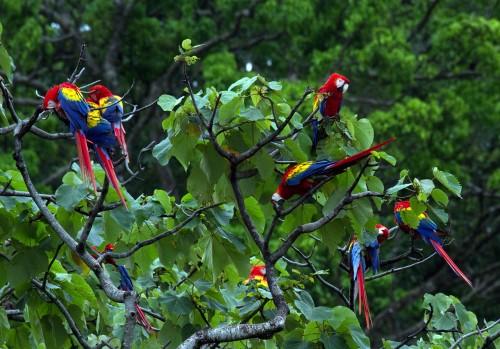 4x4 rentals in Costa Rica