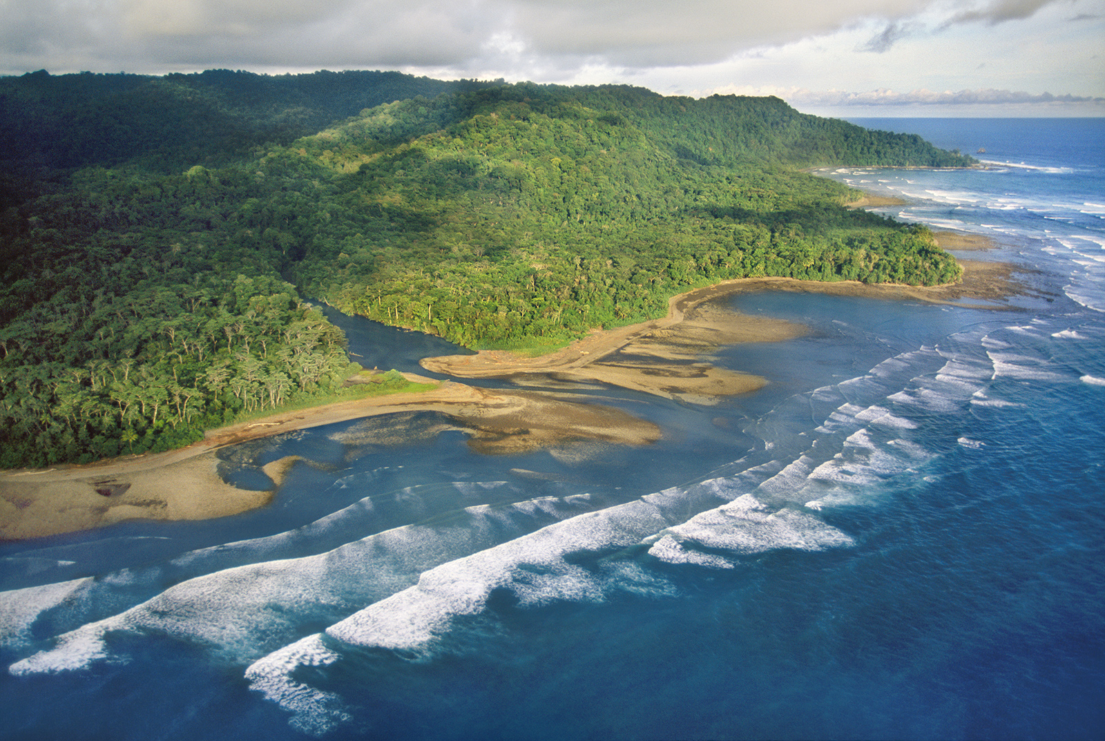 The amazing Corcovado National Park