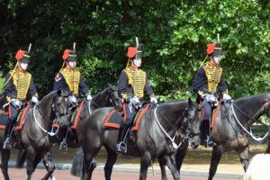 sterling-ascots-in-london-changing-of-the-guards-2