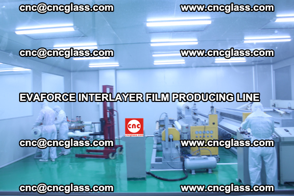 EVAFORCE INTERLAYER FILM SMART PRODUCING LINE PURIFIED (7)