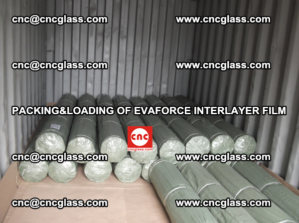 PACKING AND LOADING OF EVAFORCE INTERLAYER FILM (4)