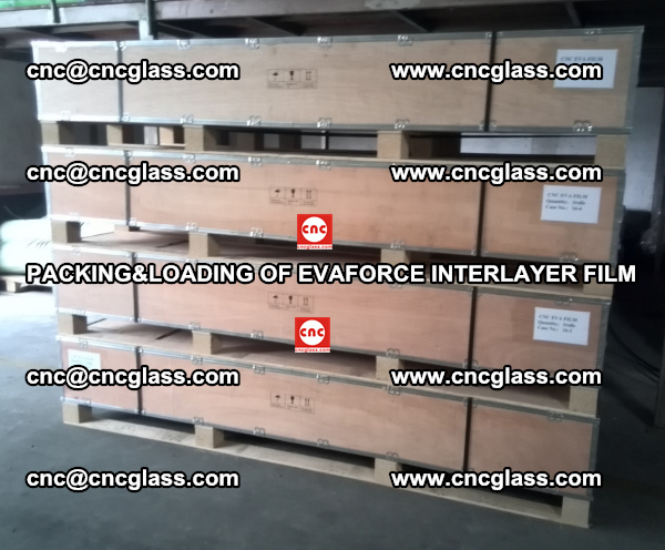 PACKING&LOADING OF EVAFORCE INTERLAYER FILM for safety laminated glass (13)