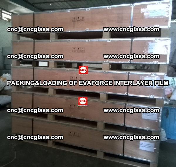 PACKING&LOADING OF EVAFORCE INTERLAYER FILM for safety laminated glass (16)