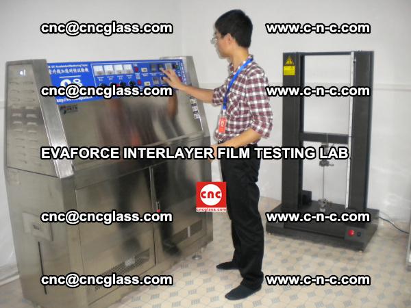 Quality Control of EVAFORCE SUPER CLEAR INTERLAYER FILM (5)