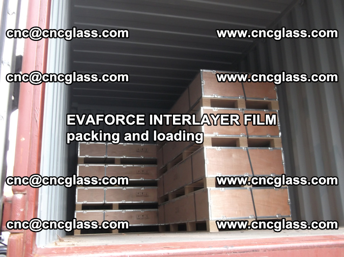EVAFORCE INTERLAYER FILM for laminated glass safety glazing (50)