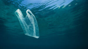 Plastic bag pollution in water