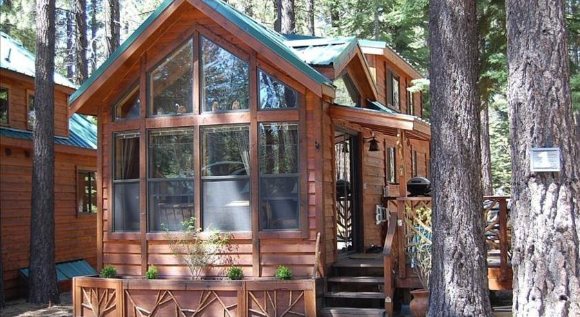 Cozy Cabins Knotty Pine Cabin