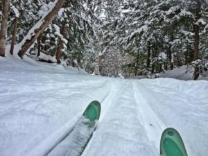 Cross Country Ski Valley Spur