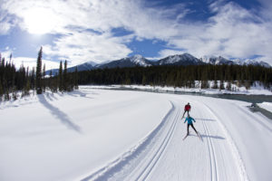 5 things you didn't know about skiing