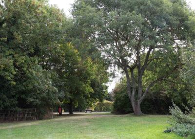 Landscape A2-2