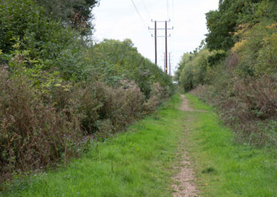 Landscape A2-4
