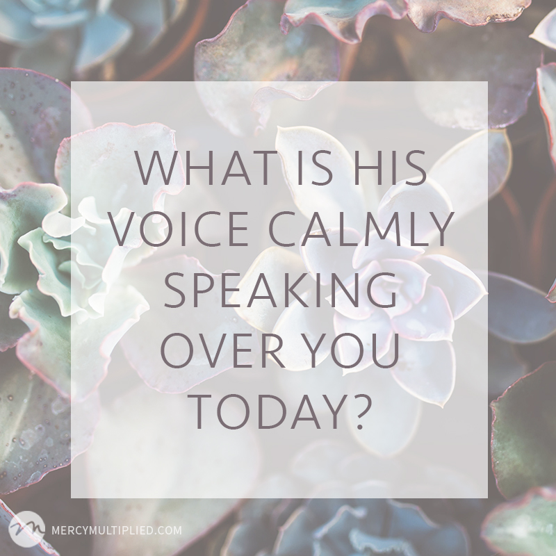 His voice | MercyMultipliedBlog.com