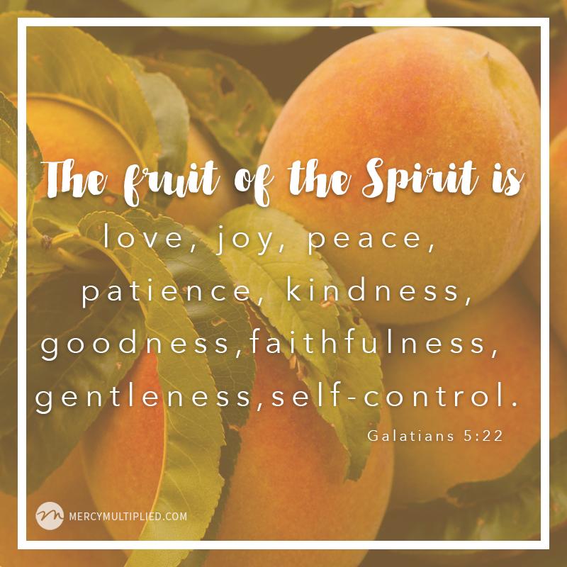 Fruit of The Spirit   Choosing Freedom   mercymultipliedblog.com