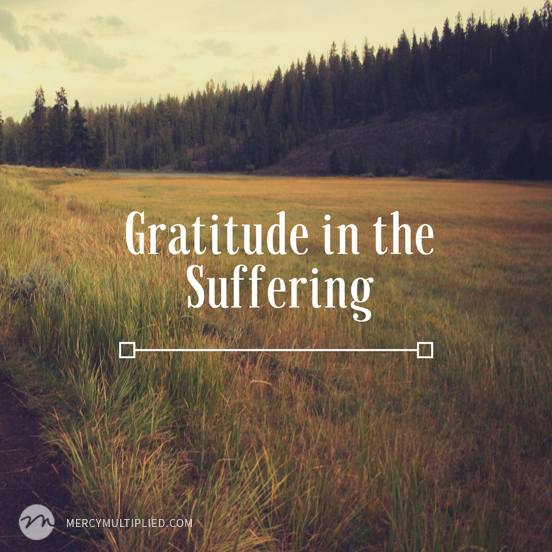 Gratitude in the Suffering