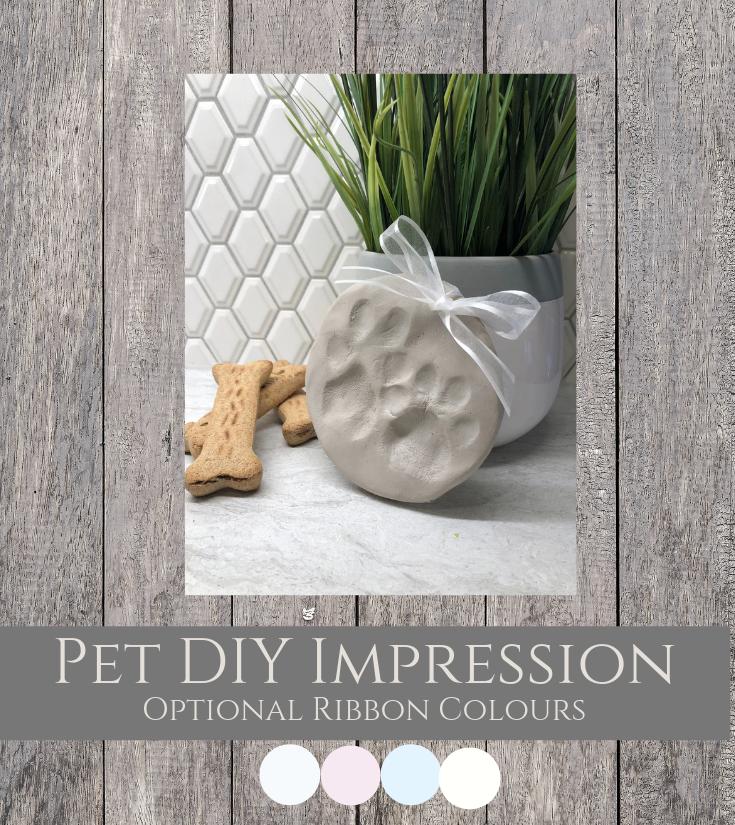 Pet DIY Impression