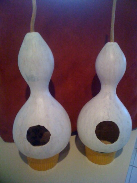 Gourds Primed with Kilz