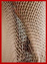 AutoInformed.com on EcoSport Honeycomb