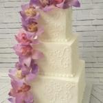 rsz_cheryl_orchids_-_ccs_sweet_sensations