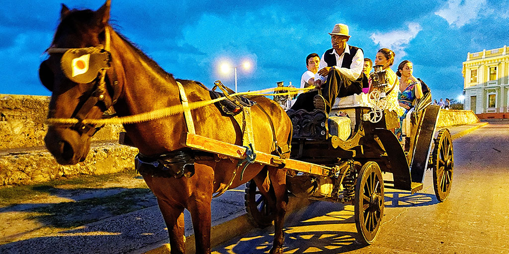 Horse Drawn Carriage Cartagena