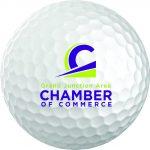 Golf Ball Chamber Logo