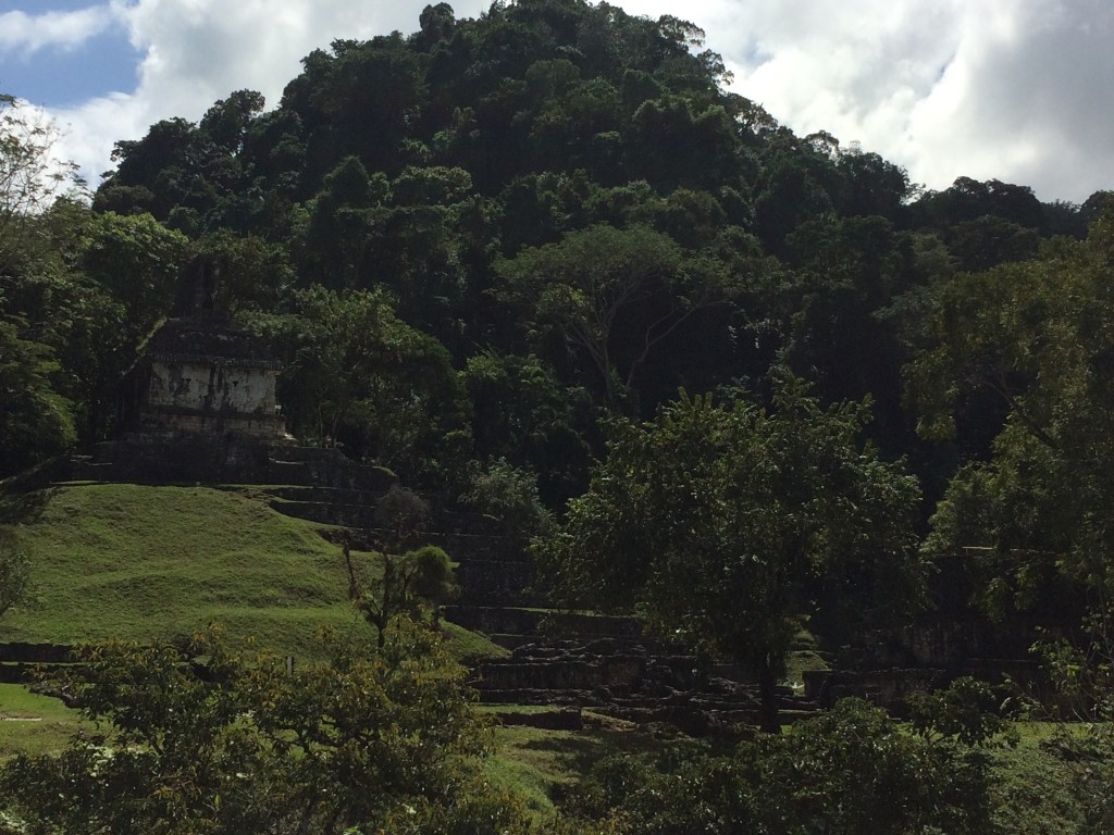 Palenque peeping out
