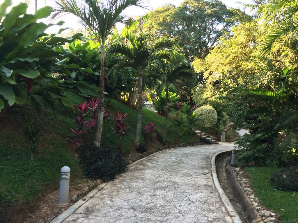 Pathway - Villa Mercedes Hotel