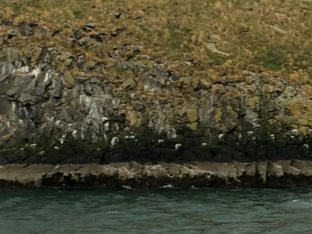 island up close