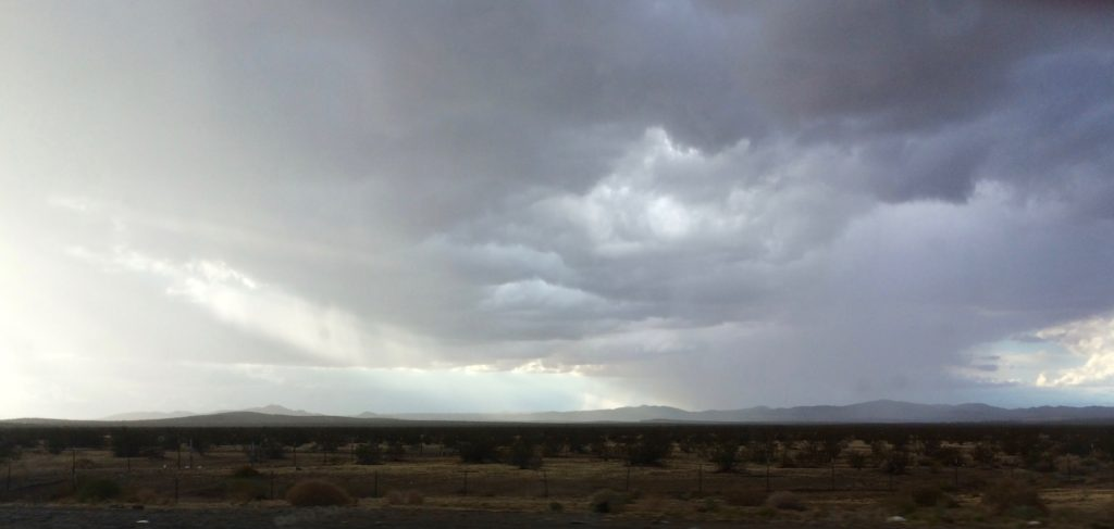 Rain in the Mojave Desert