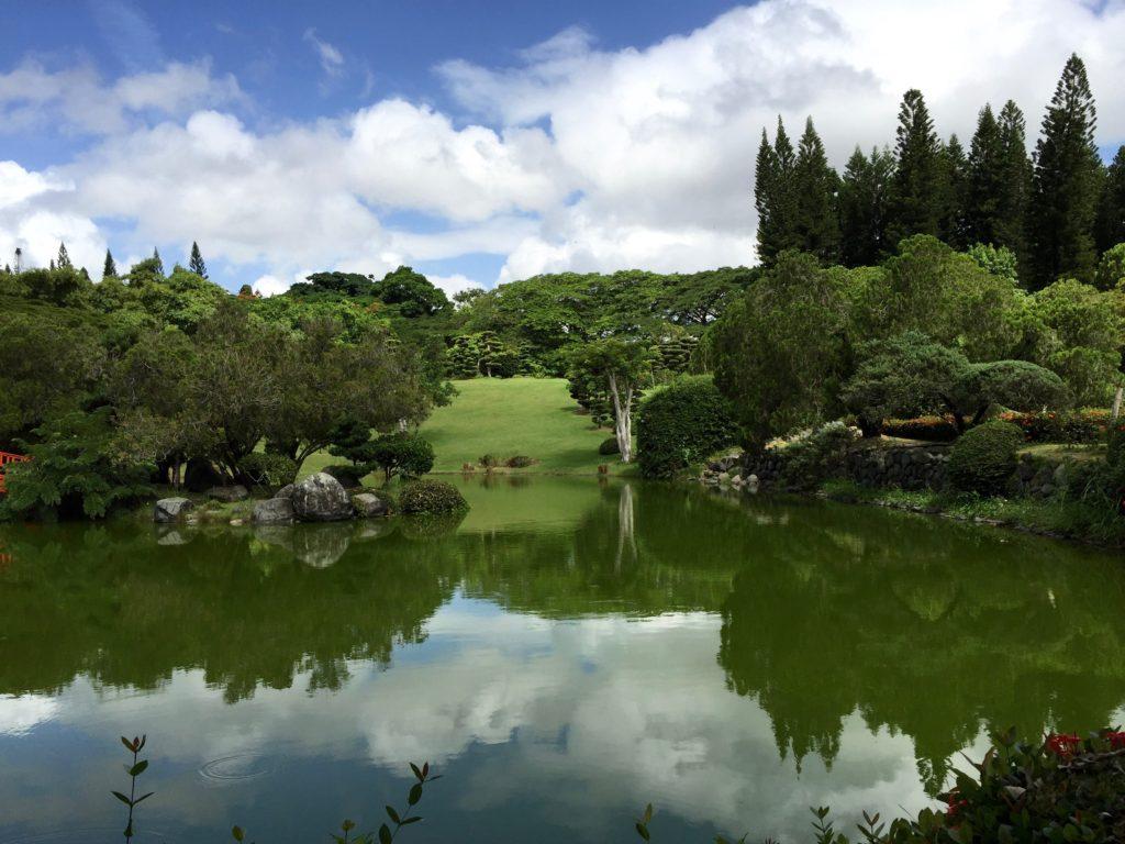 Botanical Gardens pool