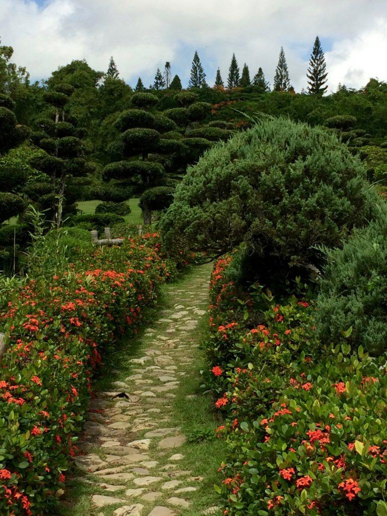 Japanese gardens pathway