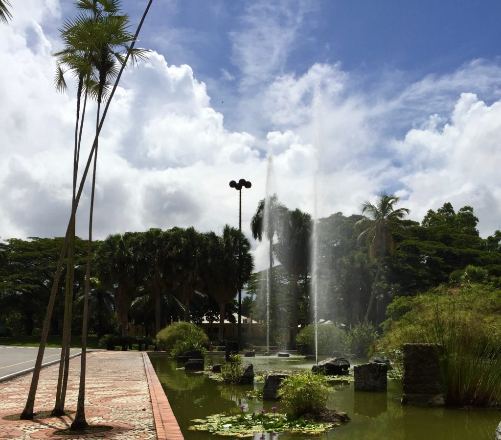 Tall skinny palms and tall skinny fountains