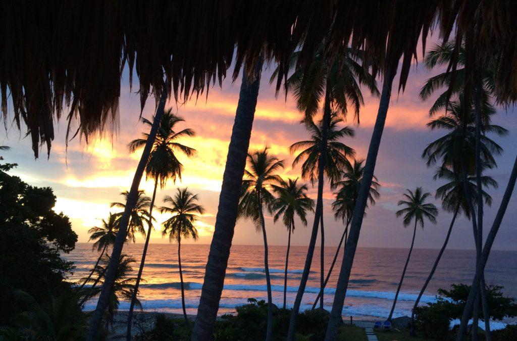 Caribbean sunrise 1