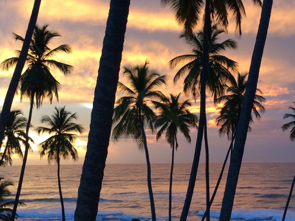 Caribbean sunrise 6