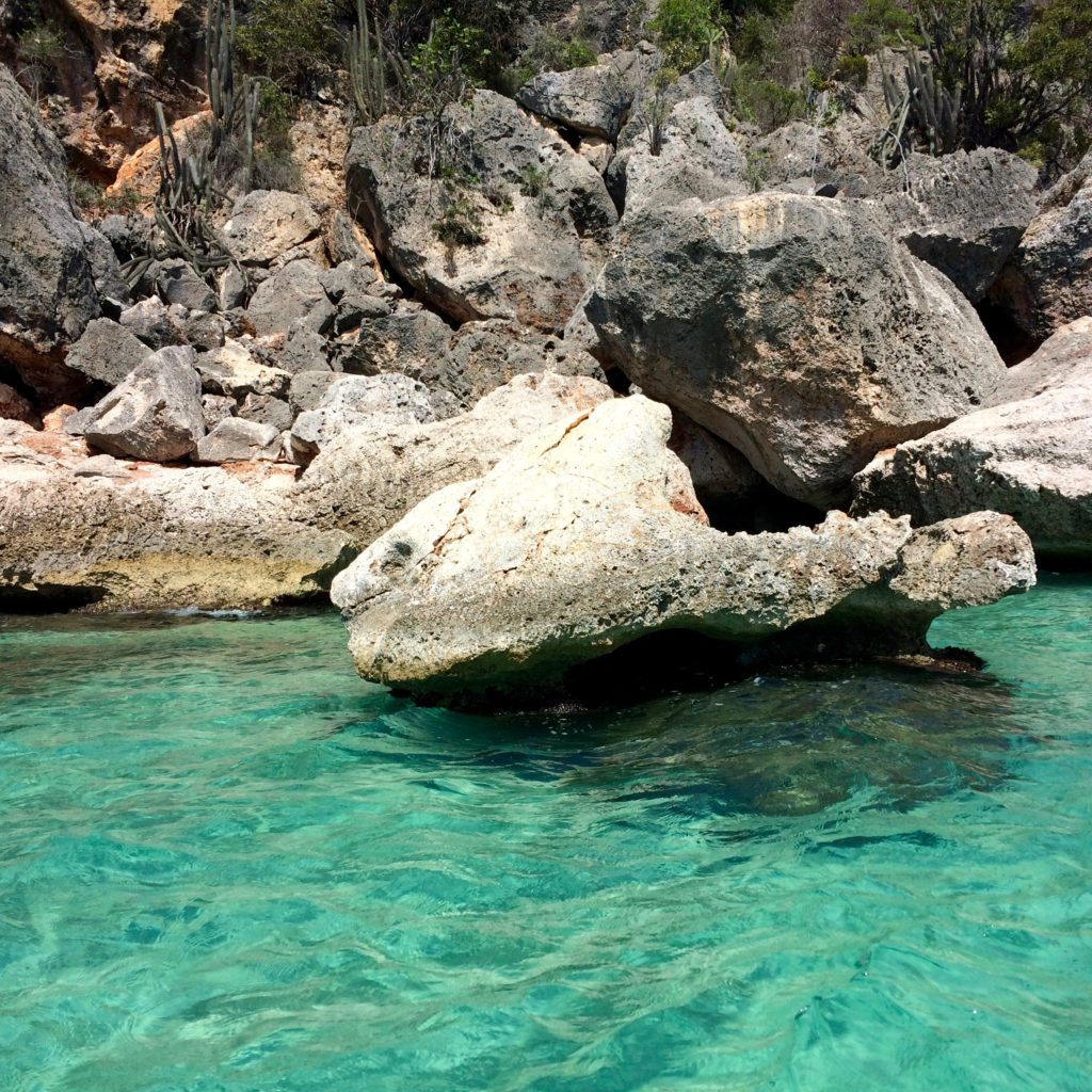 Rock Fish in Bay of Eagles