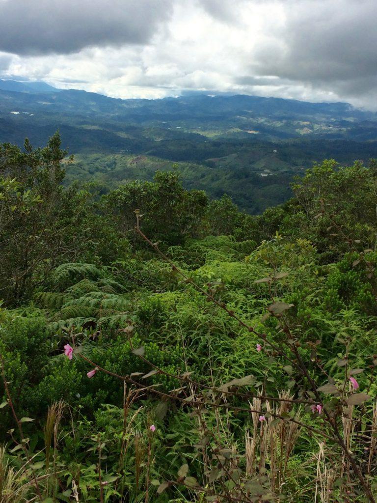 Above La Constanza valley
