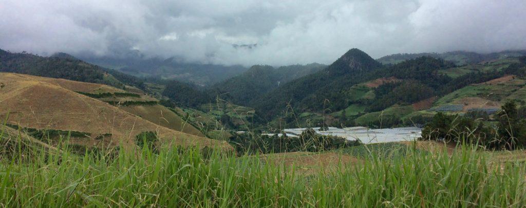 Hillside farming of La Constanza