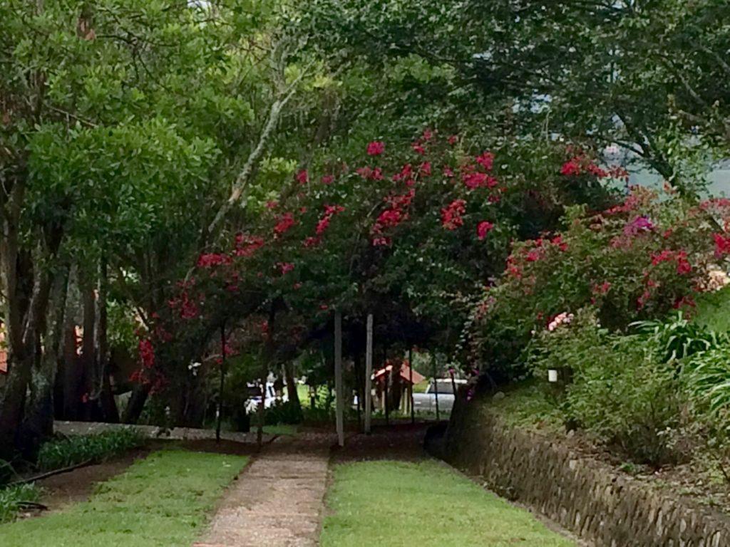 Walkway at Altocerras Villas