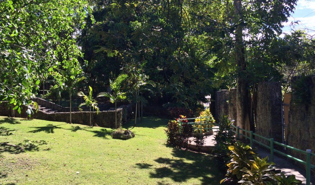 Zoo Courtyard