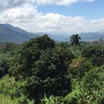 Jarabacoa hills - square