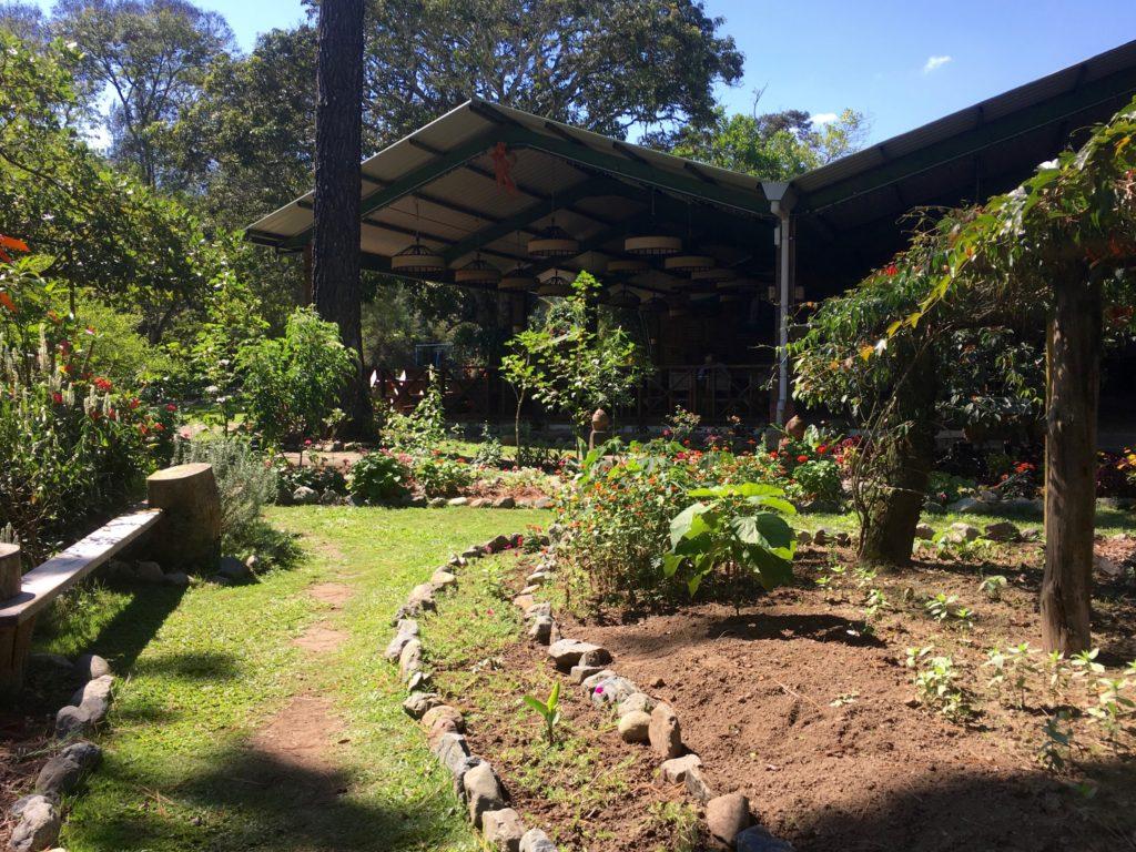 Rancho Baiguate gardens