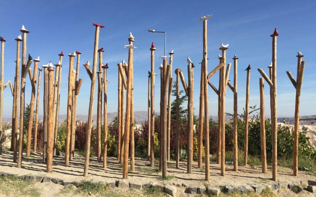 Front yard bird forest