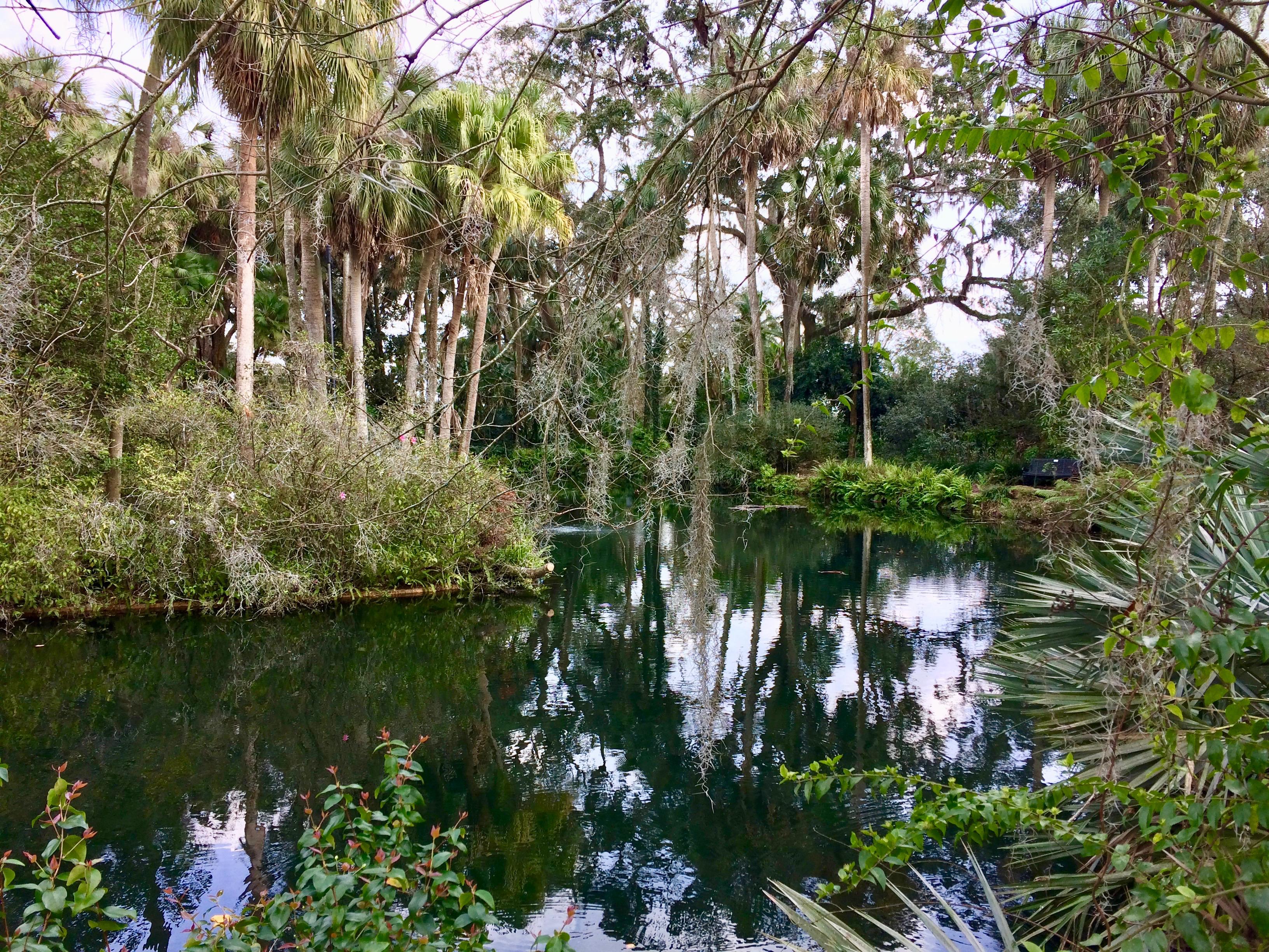 Wetlands area of Bok Tower Gardens