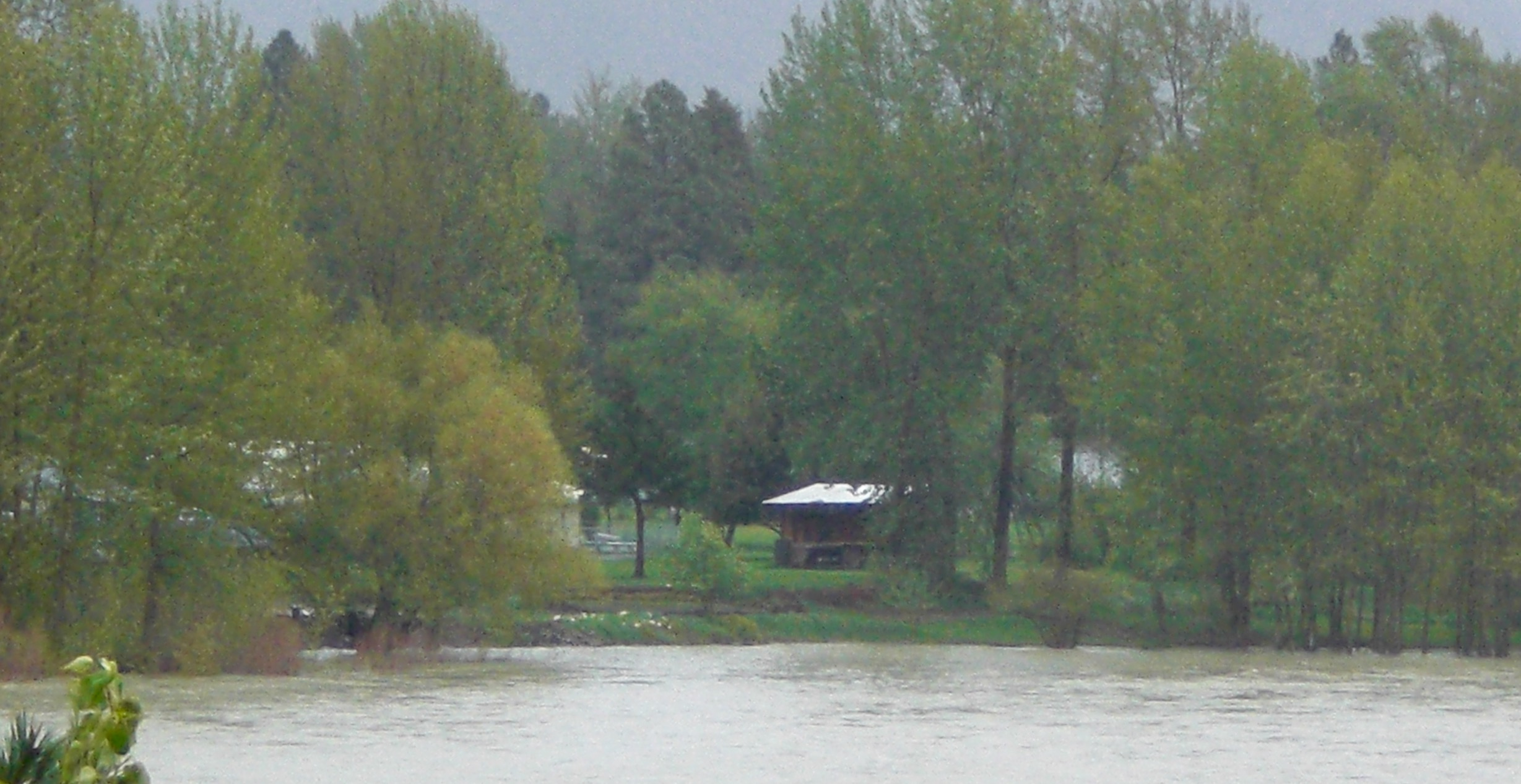 Rainy day on the Whitefish River
