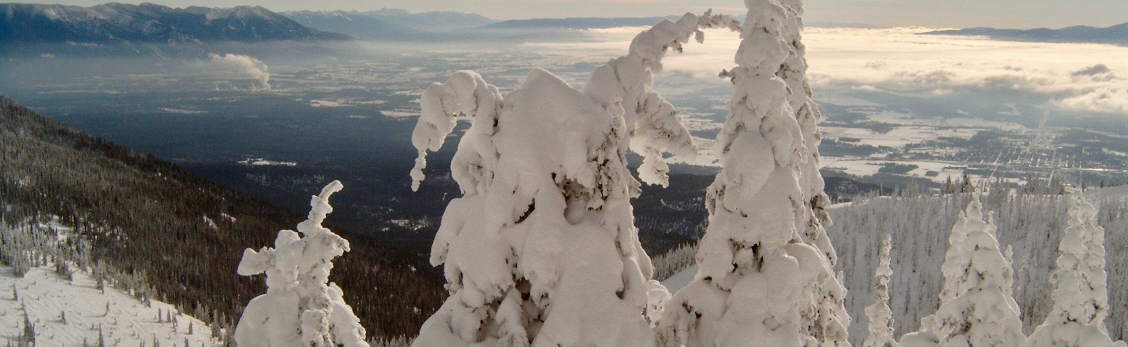 Snow ghosts over Whitefish townsite
