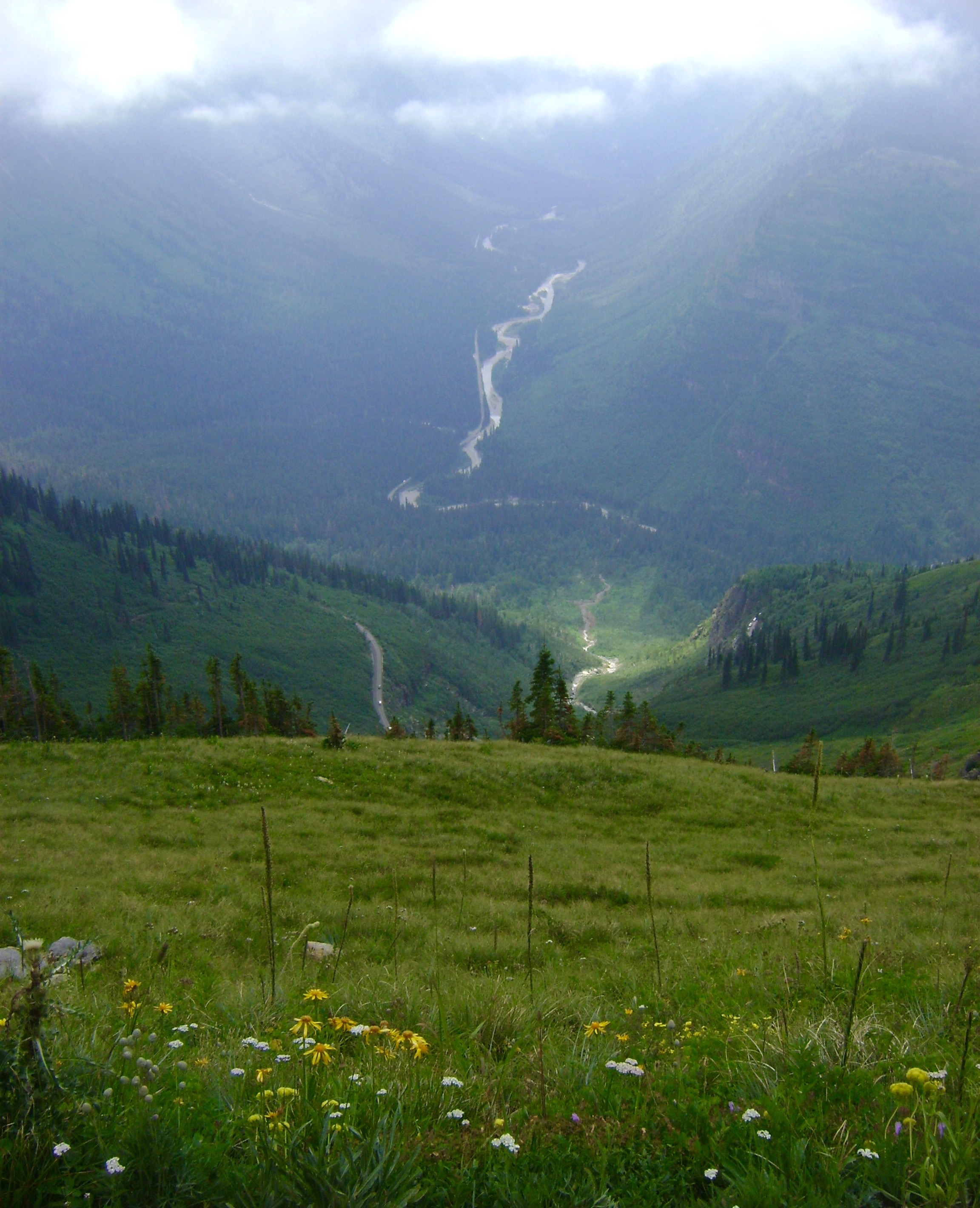 View from Highline Loop, Logan Pass, MT