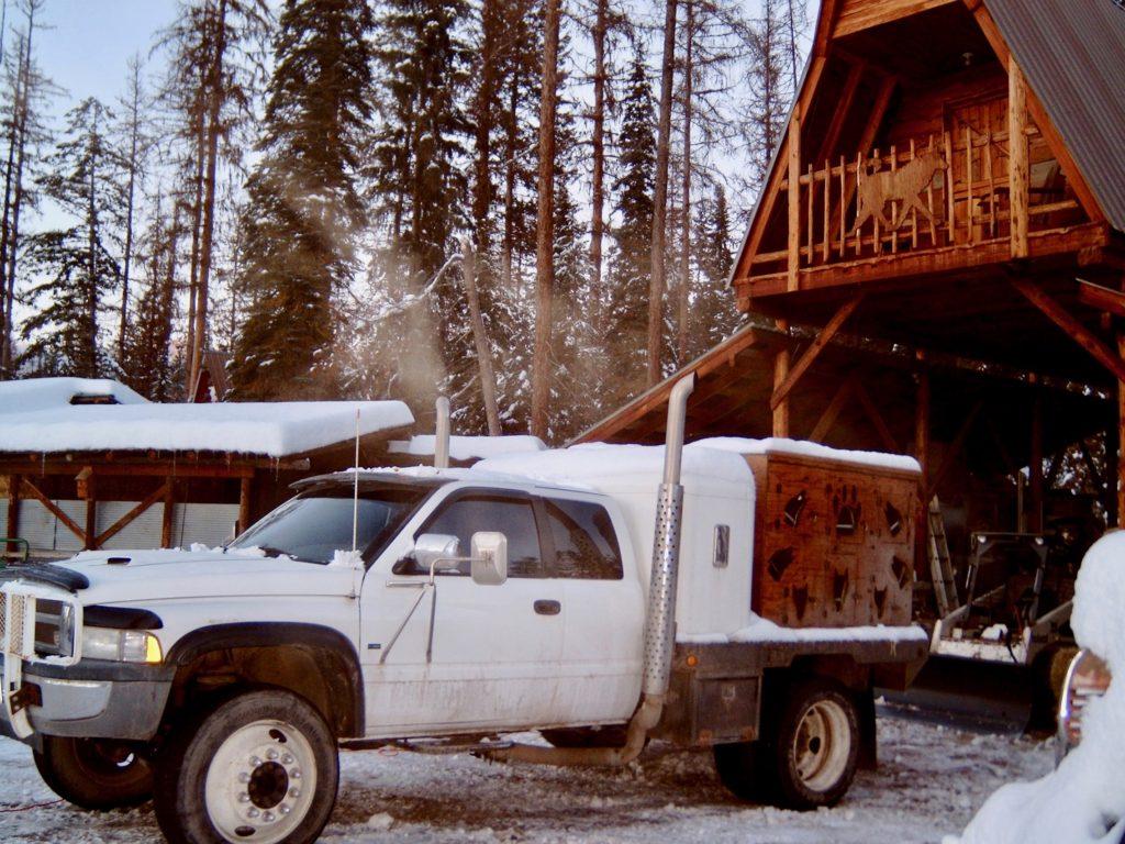 Around town dog transport truck