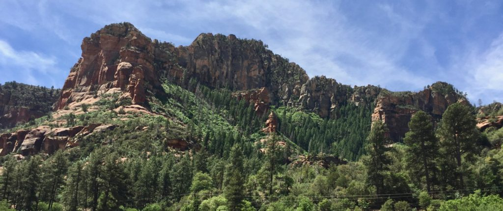 Red rocks and evergreens of Coconino National Park