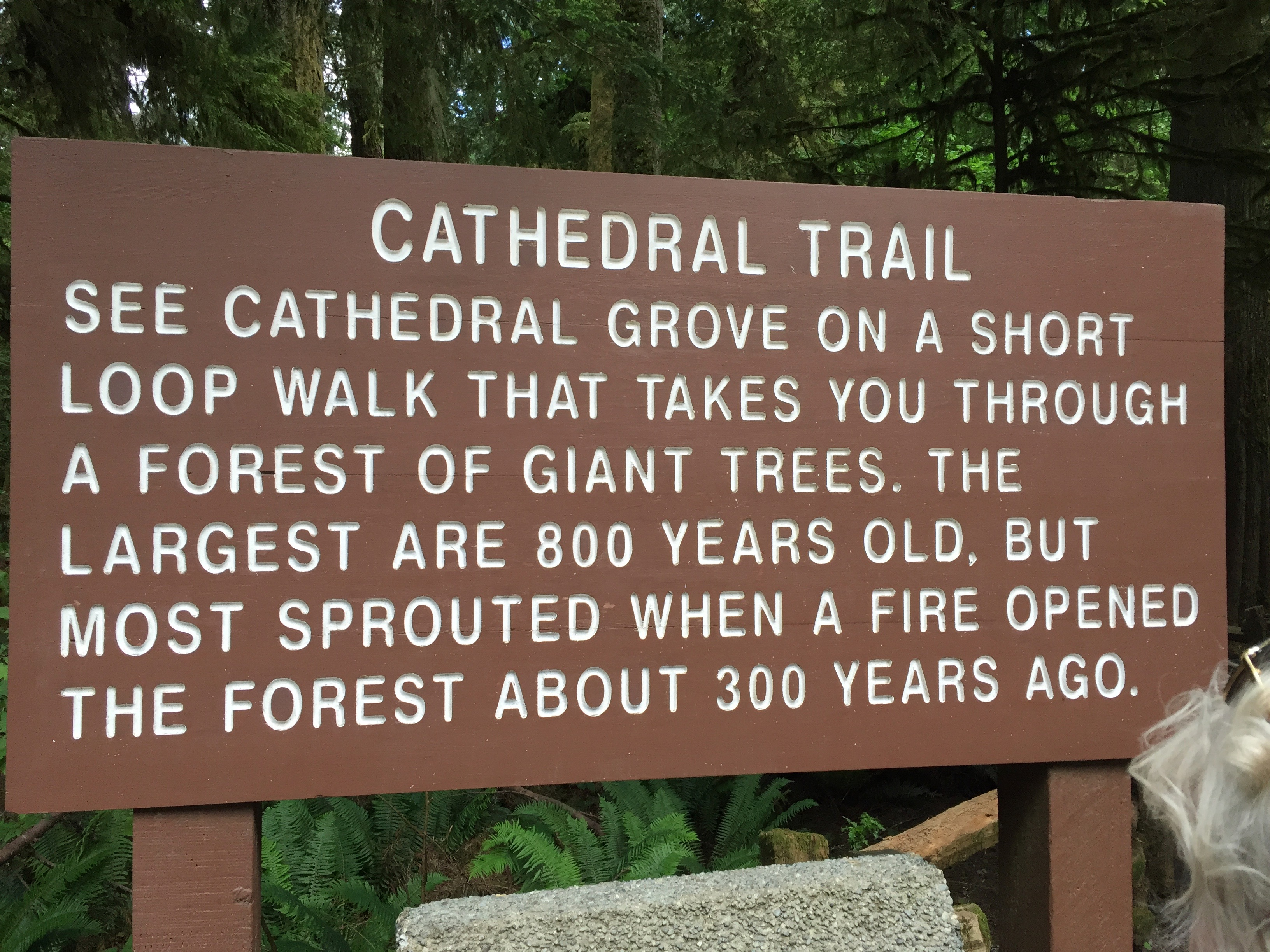 Cathedral Trail signage